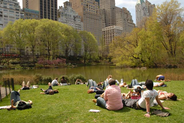 Central Park in New York is one of the green spots in the city