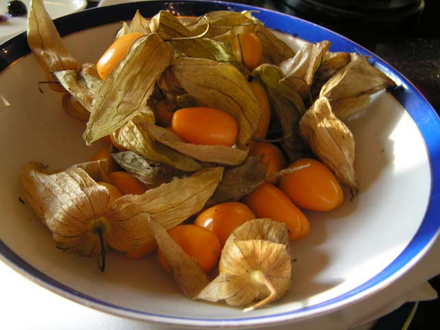 India Blog – Gooseberries are a popular fruit in India