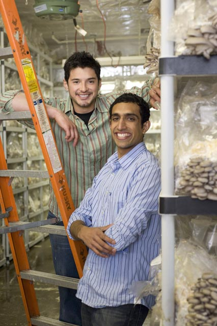 Nikhil Arora and Alejandro Velez of Back to the Roots have made a business of harvesting mushrooms from recycled coffee grounds