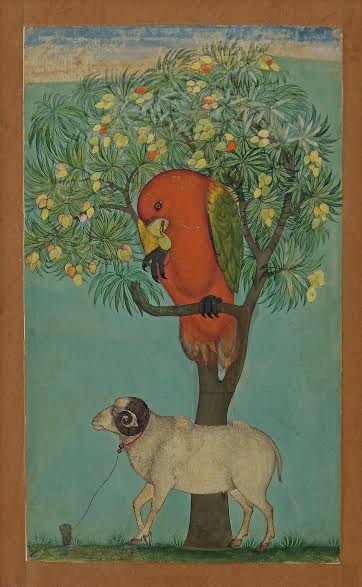 A Parrot Perched on a Mango Tree, a Ram Tethered Below Golconda, ca. 1630–70 Ink, opaque watercolor, and gold on paper 9⅜ × 5½ in. (23.9 × 14.1 cm) Jagdish and Kamla Mittal Museum of Indian Art, Hyderabad (76.438)